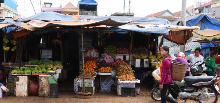 Indtryk fra de første 10 dage i Cambodia