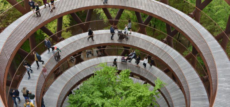 Et besøg langt over trætoppene i Skovtårnet på Sydsjælland