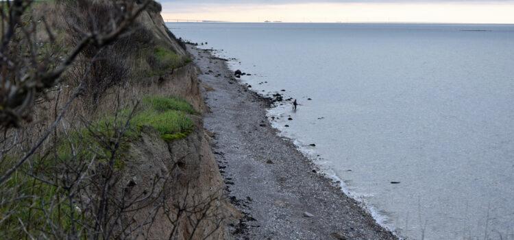 Natur som erstatning for kunst – denne gang på Reersø