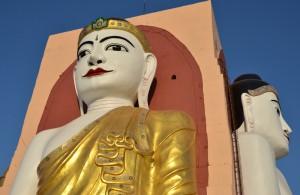 8bago buddhaer