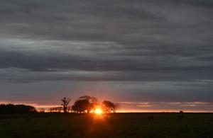 5 solnedgang